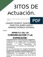 AMBITOS DE ACTUACIÓN (1)
