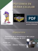 Hipotermia en Membrana Celular rio