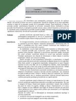 Bazele contabilitatii - Cap 5
