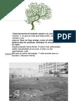 HSEC 4 Arborización
