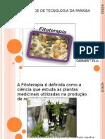 Fitoterapia No Tratamento Capilar