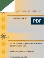 CORREÇÃO DE ATIVIDADE p 29 e 30