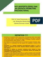 BIOTEK PERTANIAN II - Pupuk Hayati Dan PGPR + Biotransformasi C, N, P, K, S, Fe Dan Mn