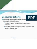 consumerbehaviormodel-101020054656-phpapp01