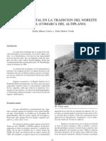 El mundo vegetal en la tradición del Noroeste de Murcia (Comarca del Altiplano).
