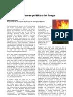 Las tramas políticas del fuego