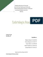 Embriologia Renal (1)