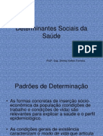 Determinantes Sociais da Saúde - SKF
