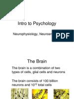 Neuroscience Ppt 2458