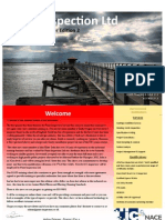 PI Newsletter Summer 2012