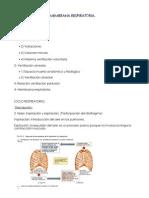 tema 19 - fisiología