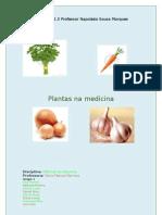 Plantas na medicina - 5º H versão final