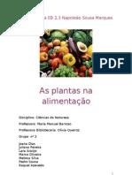 As plantas na alimentação 5ºH Grupo nº 2
