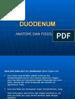 Anatomi Duodenum Hendri