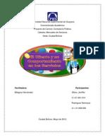 Informe Mercadeo. Cliente (1)
