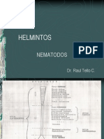 6 NEMATODOS