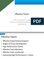 Effective Teams PDP[1]