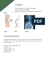 Radiologi Kelainan Vertebrae