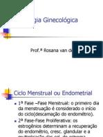 3oANO.semiO 17. Semiologia Gin Ecologic A 27.08.2007