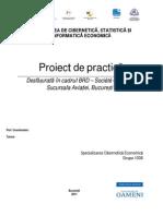 Exemplul 1 Proiect Practica Spec CE.doc