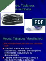 Mouse, Tastatura Vizualizatorul