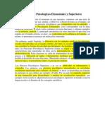 Funciónes Psicológicas Elementales y Superiores