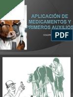 APLICACIÓN DE MEDICAMENTOS Y PRIMEROS AUXILIOS