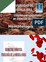 Fisiologia de La Medula Osea