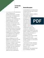Descripción de la función de los psicofármacos