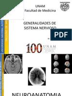 General Ida Des Del Sistema Nervioso