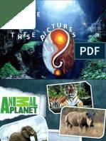 textbook_reading_powerpointlesson
