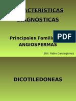 Diagnosis Familias