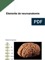 44453673-Elemente-de-Neuroanatomie