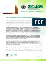 Undb Fact Sheets Ru Web