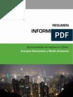 RESUMEN DEL INFORME ASEES. Oportunidades de Negocio en China. Energías Renovables y Medio Ambiente