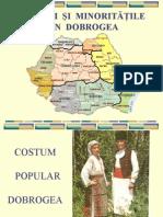 ROMÂNII  ŞI  MINORITĂŢILE  DIN  DOBROGEA