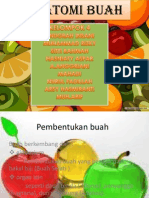 presentasi botfar buah