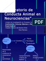 Charla Lab Oratorio de Conducta Animal en Neurociencias