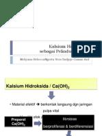 Kalsium Hidroksida