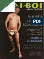 plaicuboi ianuarie2001