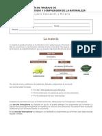 Guiatrabajocienciaslamateria_Codelcoeduca