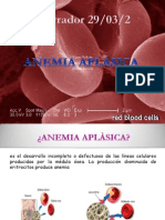 Anemia Karen