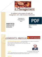 Literature review on credit risk management in banks