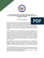 Lineamientos para un plan de trabajo sobre derechos humanos y medio ambiente en Perú