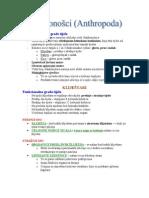 Biologija - skripta
