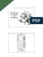 enzimass estrutura