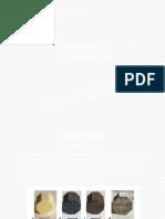presentación catalizadores monoliticos