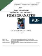 pomegranatevs2010