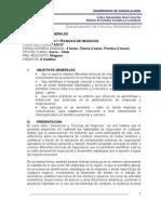 Programa Simulacion y Tecnicas de Negocios 2012 A
