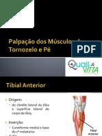 13ª Aula - Palpação dos Músculos do Tornozelo e Pé (CURSO)